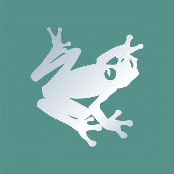 Акриловое зеркало Лягушка