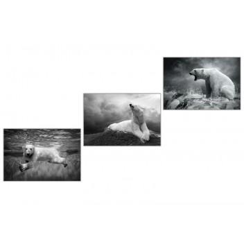 """Модульная картина """"Из жизни медведей"""""""